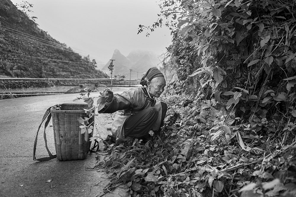 Rural China Photography Tours. Photo Jonathan Taylor.